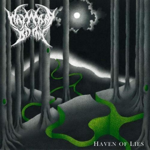 Wayward Dawn - Haven of Lies (2020)