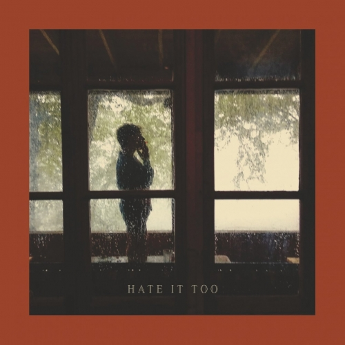Hate It Too - Lampshading (2020)
