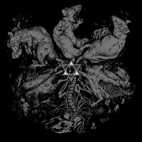 Death Illuminate - Cold Merciless Hands (2020)