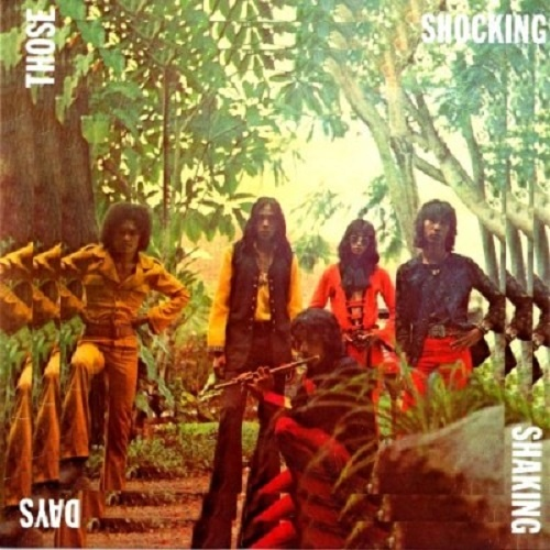 VA - Those Shocking Shaking Days - 1970-78 (2011)