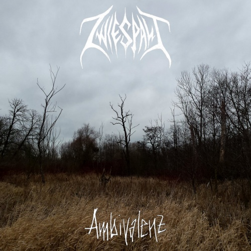 Zwiespalt - Ambivalenz (2020)