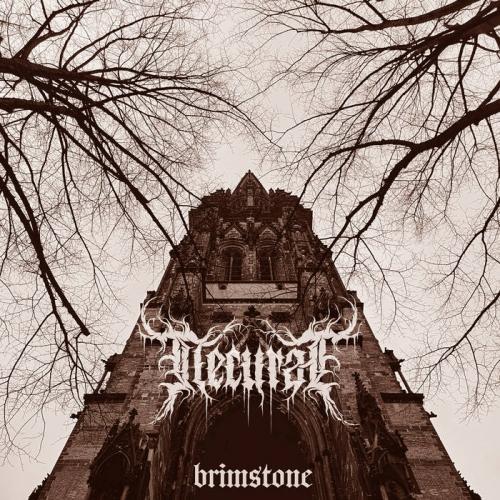 Necurat - Brimstone (2020)
