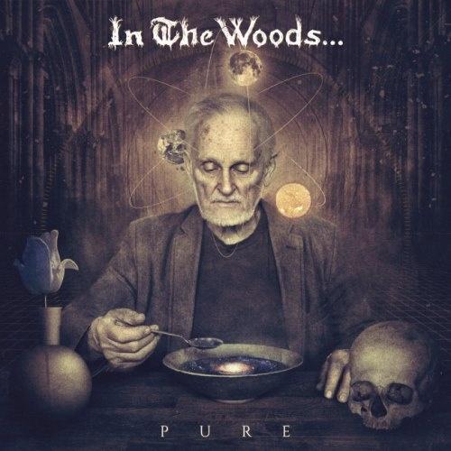 In The Woods... - Рurе (2016)