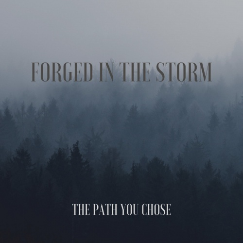 Forged In The Storm - The Path You Chose (2020)