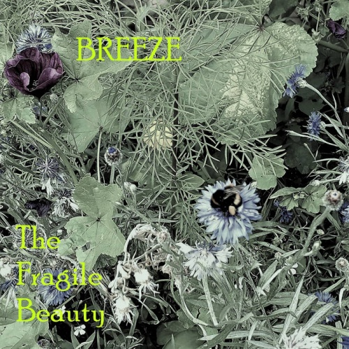 Breeze - The Fragile Beauty (2020)