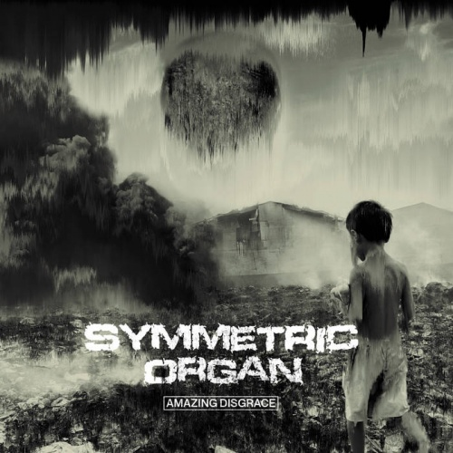 Symmetric Organ - Amazing Disgrace (2020)