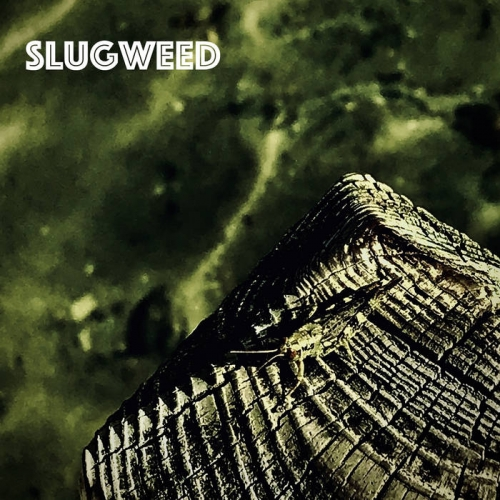 SlugWeed - Internal (2020)