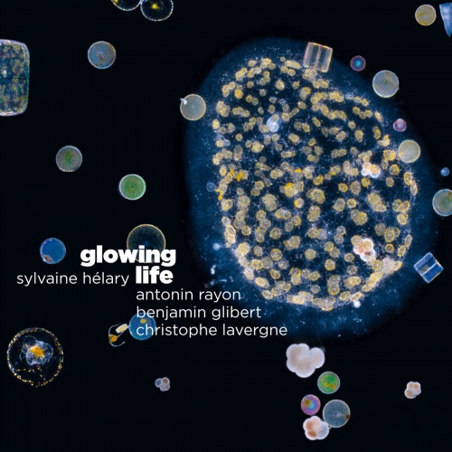 Sylvaine Helary - Glowing Life (2020)