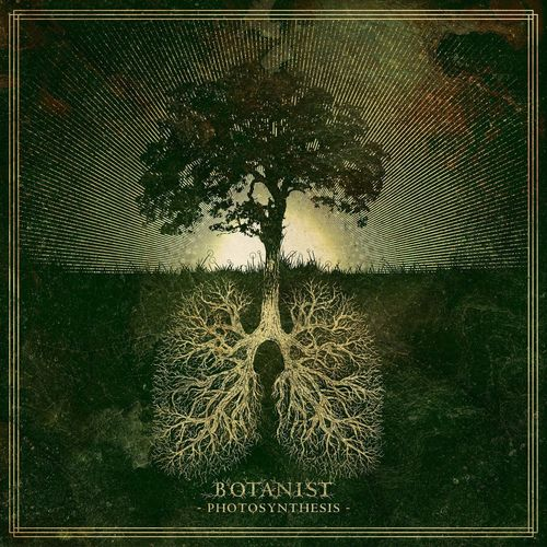 Botanist - Photosynthesis (2020)