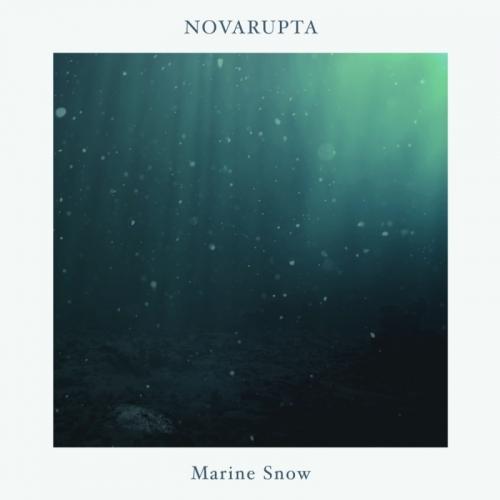 Novarupta - Marine Snow (2020)