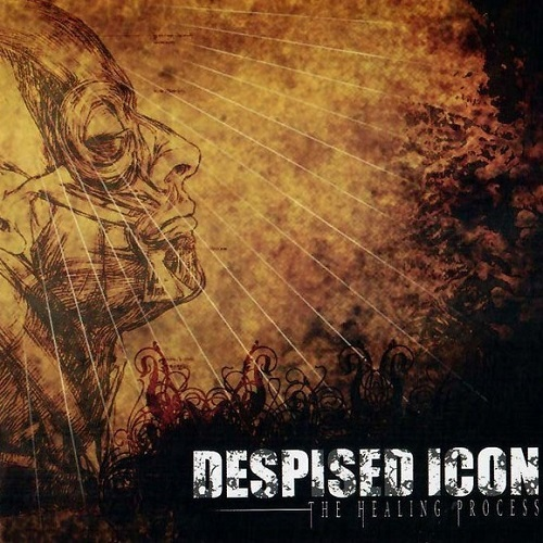 Despised Icon - The Healing Process (2005)
