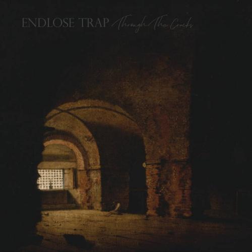 Endlose Trap - Through The Cracks (2020)