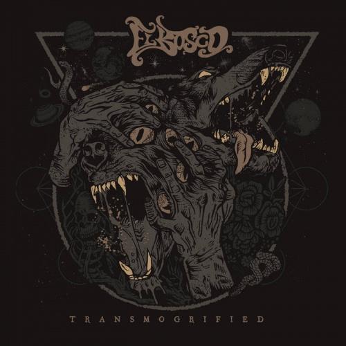 El Bosco - Transmogrified (2020)