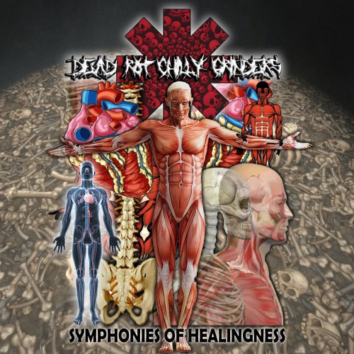 Dead Rot Chilly Grinders - Symphonies of Healingness (2021)