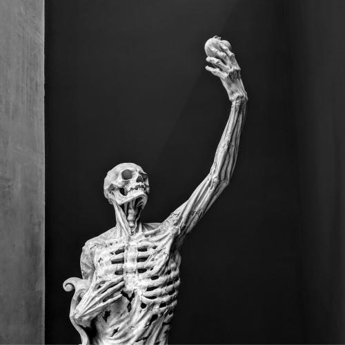 Poly-Math - The Cadaver Tomb Pt.1 (2021)