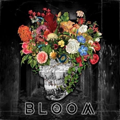 Cold Hvnds - BLOOM (2021)