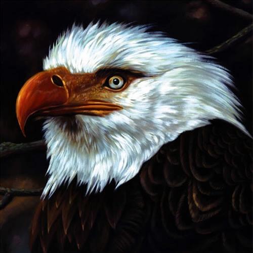 Mogwai - The Hawk Is Howling (2008)