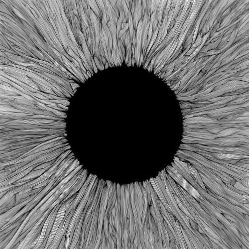 VOLA - Witness (2021)