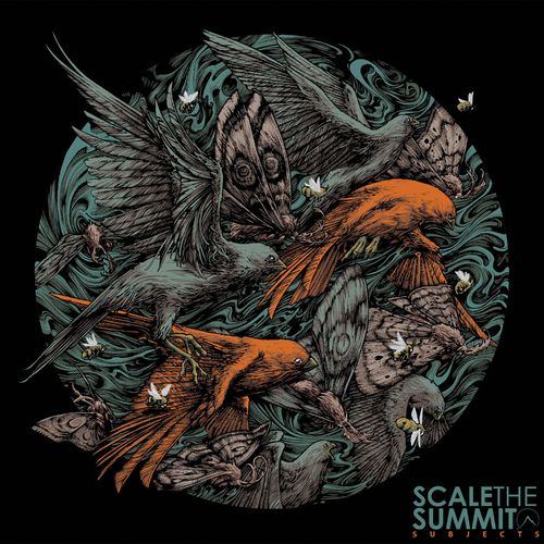 Scale the Summit - Subjects (2021) + Instrumentals