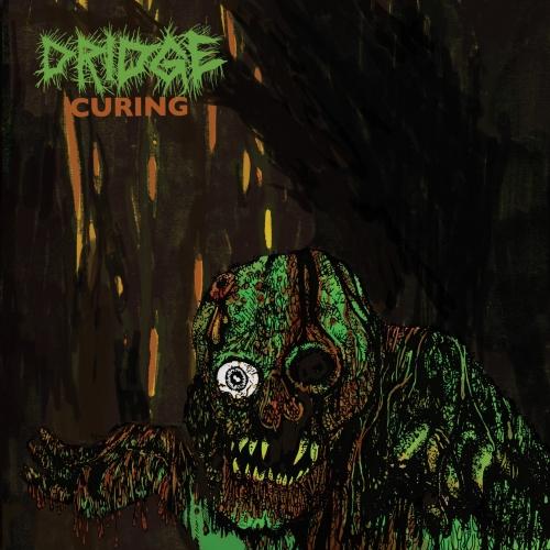 Dridge - Curing (2021)