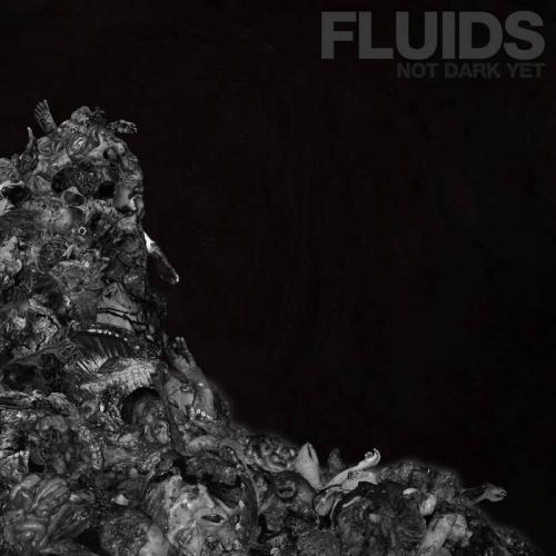 Fluids - Not Dark Yet (2021)