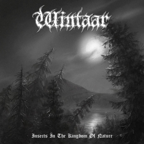 Wintaar - Insects in the Kingdom of Nature (2021)
