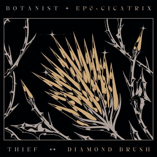 Thief/ Botanist - Cicatrix / Diamond Brush (2021)