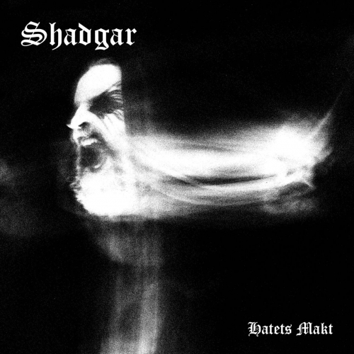 Shadgar - Hatets makt (2021)