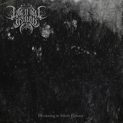 Manen Skygge - Drowning in Silent Echoes (2021)