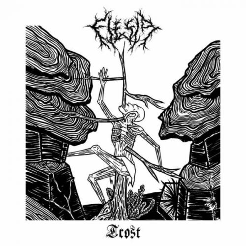Flesia - Trost (2021)