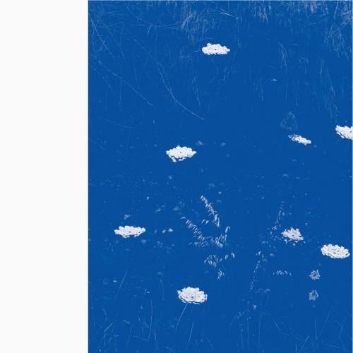 Merzbow - Flare Blues (2021)